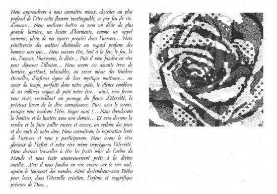 au coeur de la rose ...