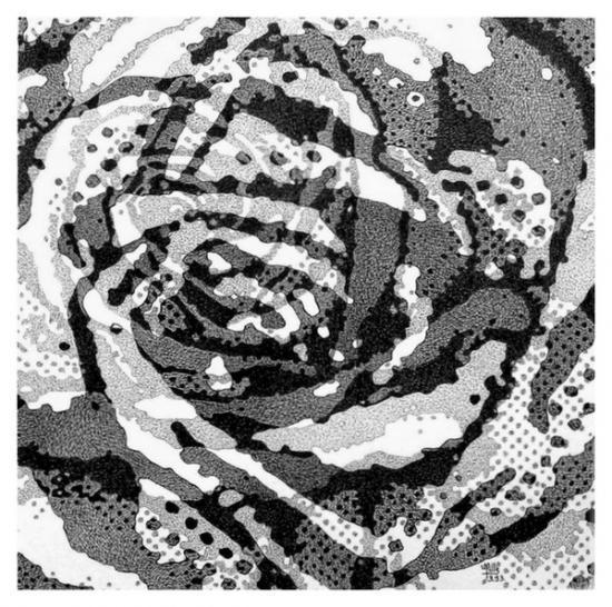 au coeur de la rose